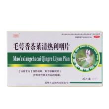 生命之舟 毛萼香茶菜清热利咽片 20片 清热利咽