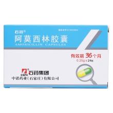 石药 阿莫西林胶囊 0.5g*24
